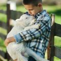 Boy with Lamb