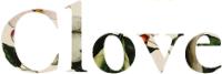 Clove WordPress Site