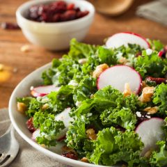 Healthy Raw Kale and Cranberry Salad